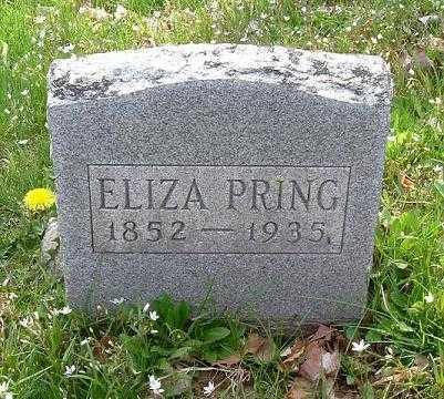 PRING, ELIZA - Hocking County, Ohio | ELIZA PRING - Ohio Gravestone Photos
