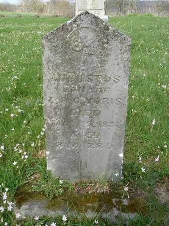 VORIS, AUGUSTUS - Hocking County, Ohio   AUGUSTUS VORIS - Ohio Gravestone Photos