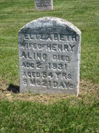 ALING, HENRY - Holmes County, Ohio | HENRY ALING - Ohio Gravestone Photos