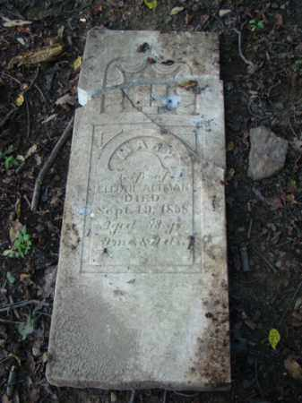 ALTMAN, MARY - Holmes County, Ohio   MARY ALTMAN - Ohio Gravestone Photos
