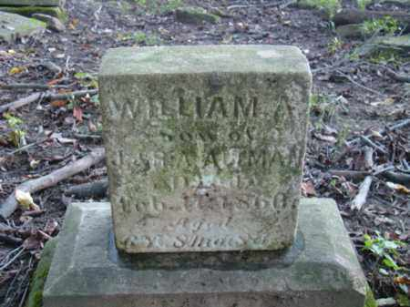 ALTMAN, WILLIAM A. - Holmes County, Ohio | WILLIAM A. ALTMAN - Ohio Gravestone Photos