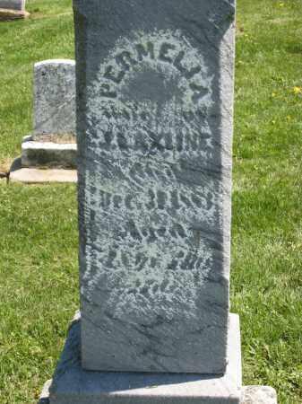 AXLINE, PERMELIA - Holmes County, Ohio | PERMELIA AXLINE - Ohio Gravestone Photos