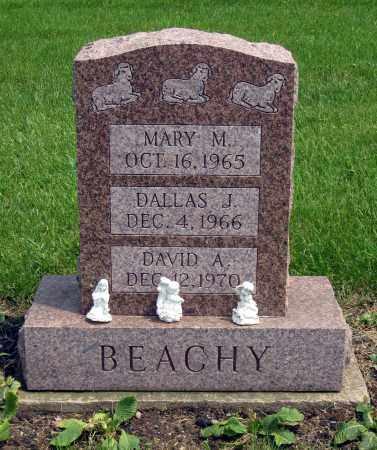 BEACHY, MARY M. - Holmes County, Ohio | MARY M. BEACHY - Ohio Gravestone Photos