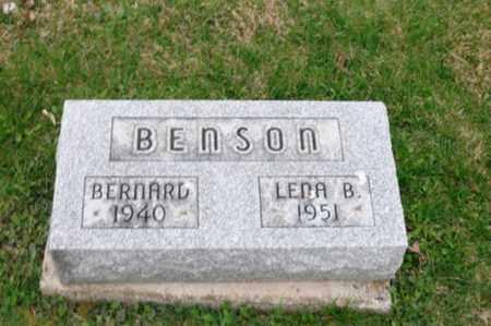 BRAUN BENSON, LENA - Holmes County, Ohio | LENA BRAUN BENSON - Ohio Gravestone Photos