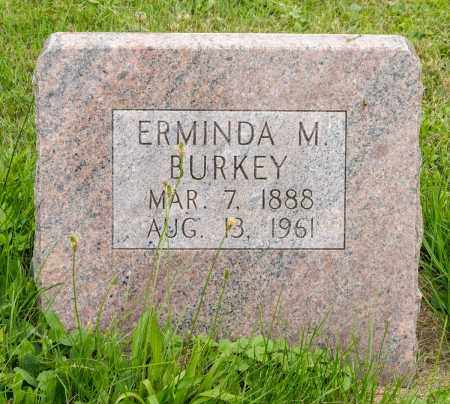 BURKEY, ERMINDA M. - Holmes County, Ohio | ERMINDA M. BURKEY - Ohio Gravestone Photos