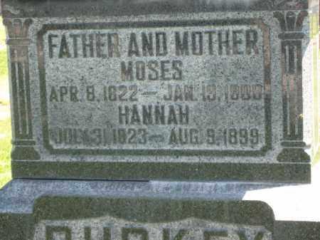 BURKEY, HANNAH - Holmes County, Ohio | HANNAH BURKEY - Ohio Gravestone Photos