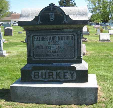 BURKEY MONUMENT, MOSES - Holmes County, Ohio | MOSES BURKEY MONUMENT - Ohio Gravestone Photos