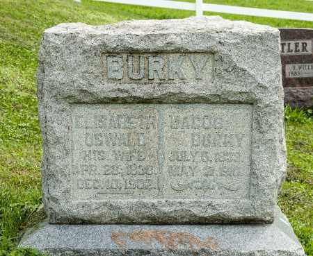 BURKY, ELISABETH - Holmes County, Ohio | ELISABETH BURKY - Ohio Gravestone Photos