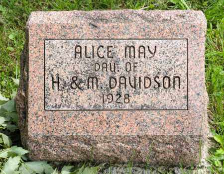 DAVIDSON, ALICE MAY - Holmes County, Ohio | ALICE MAY DAVIDSON - Ohio Gravestone Photos