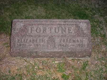 FORTUNE, ELIZABETH - Holmes County, Ohio | ELIZABETH FORTUNE - Ohio Gravestone Photos