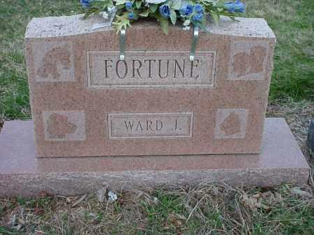 FORTUNE, WARD JESSE - Holmes County, Ohio | WARD JESSE FORTUNE - Ohio Gravestone Photos