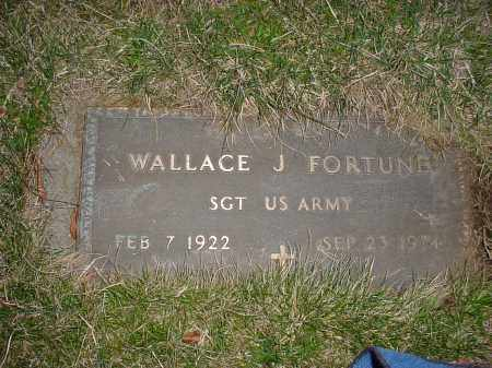 FORTUNE, WALLACE J - Holmes County, Ohio   WALLACE J FORTUNE - Ohio Gravestone Photos