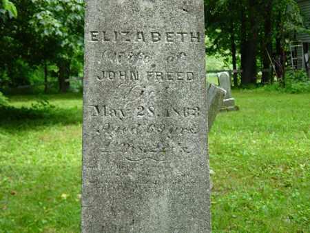 FREED, ELIZABETH - Holmes County, Ohio | ELIZABETH FREED - Ohio Gravestone Photos