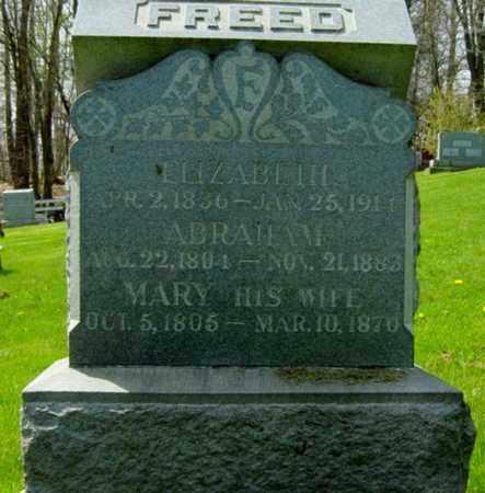 FREED, MARY - Holmes County, Ohio | MARY FREED - Ohio Gravestone Photos