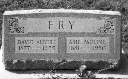 FRY, DAVID ALBERT - Holmes County, Ohio | DAVID ALBERT FRY - Ohio Gravestone Photos