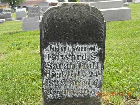 HALL, JOHN - Holmes County, Ohio | JOHN HALL - Ohio Gravestone Photos