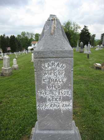 HALL, SARAH - Holmes County, Ohio | SARAH HALL - Ohio Gravestone Photos