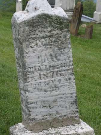 HALL, SAMUEL - Holmes County, Ohio | SAMUEL HALL - Ohio Gravestone Photos