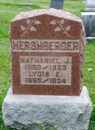 HERSHBERGER, LYDIA E. - Holmes County, Ohio   LYDIA E. HERSHBERGER - Ohio Gravestone Photos