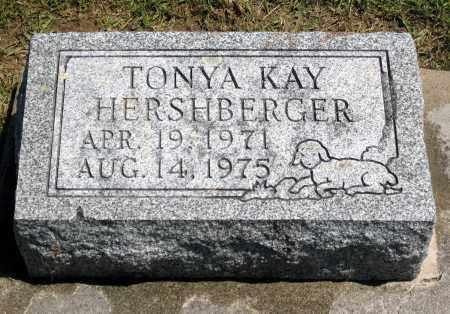 KAY HERSHBERGER, TONYA - Holmes County, Ohio | TONYA KAY HERSHBERGER - Ohio Gravestone Photos