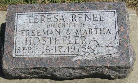 HOSTETLER, TERESA RENEE - Holmes County, Ohio | TERESA RENEE HOSTETLER - Ohio Gravestone Photos
