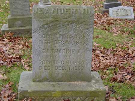 JEANDERWIN, CATHARINE A. - Holmes County, Ohio | CATHARINE A. JEANDERWIN - Ohio Gravestone Photos