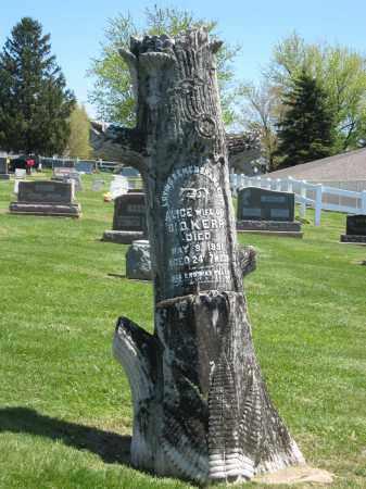 KERR  TREE TRUNK, ALICE - Holmes County, Ohio   ALICE KERR  TREE TRUNK - Ohio Gravestone Photos