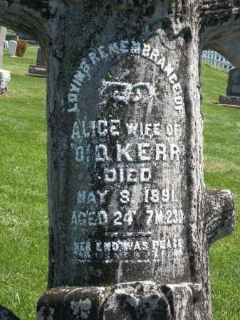 KERR, ALICE - Holmes County, Ohio | ALICE KERR - Ohio Gravestone Photos
