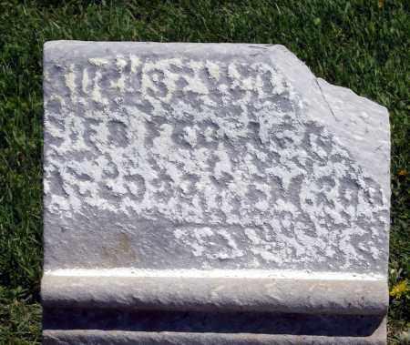 L____, AUGUST W. - Holmes County, Ohio | AUGUST W. L____ - Ohio Gravestone Photos