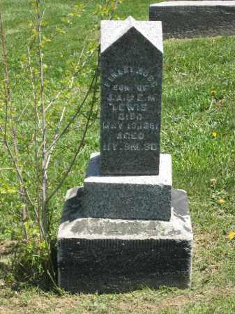 LEWIS, FINLEY ROSS - Holmes County, Ohio   FINLEY ROSS LEWIS - Ohio Gravestone Photos