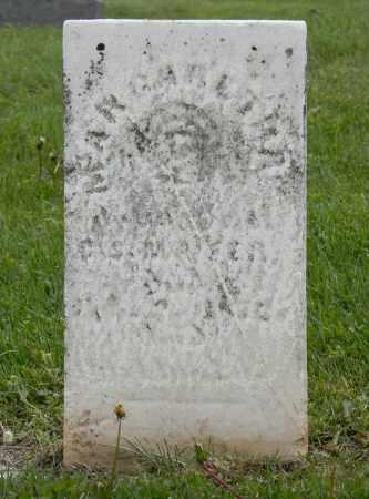 MAYER, S. - Holmes County, Ohio | S. MAYER - Ohio Gravestone Photos