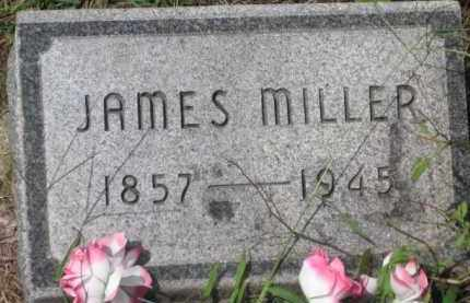 MILLER, JAMES - Holmes County, Ohio | JAMES MILLER - Ohio Gravestone Photos