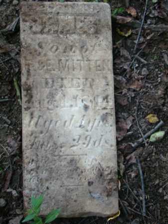 MITTEN, JAMES - Holmes County, Ohio | JAMES MITTEN - Ohio Gravestone Photos