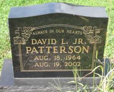 PATTERSON, DAVID L. - Holmes County, Ohio   DAVID L. PATTERSON - Ohio Gravestone Photos