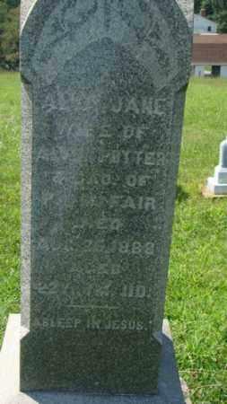 POTTER, ALICY - Holmes County, Ohio | ALICY POTTER - Ohio Gravestone Photos