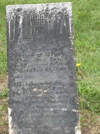 RILEY MONUMENT, MATHEW - Holmes County, Ohio | MATHEW RILEY MONUMENT - Ohio Gravestone Photos
