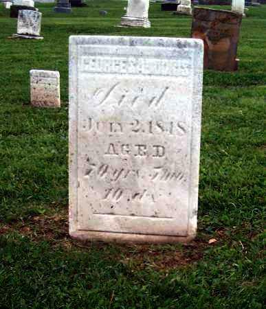 SADDORIS, GEORGE - Holmes County, Ohio | GEORGE SADDORIS - Ohio Gravestone Photos