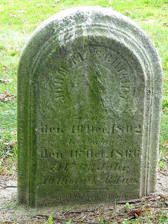 SCHMIDT, JOHN M. - Holmes County, Ohio | JOHN M. SCHMIDT - Ohio Gravestone Photos