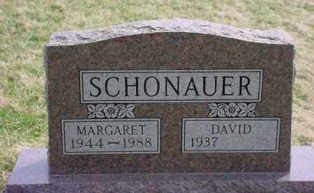 SCHONAUER, DAVID - Holmes County, Ohio | DAVID SCHONAUER - Ohio Gravestone Photos