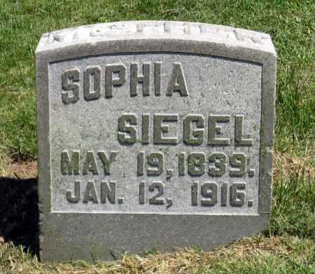 SIEGEL, SOPHIA - Holmes County, Ohio | SOPHIA SIEGEL - Ohio Gravestone Photos