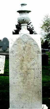 SMITH, MONUMNET - Holmes County, Ohio | MONUMNET SMITH - Ohio Gravestone Photos