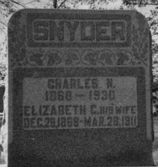 SNYDER, ELIZABETH C. - Holmes County, Ohio | ELIZABETH C. SNYDER - Ohio Gravestone Photos