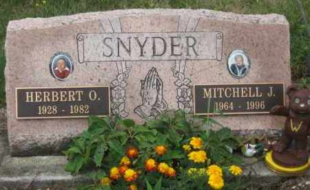 SNYDER, HERBERT O. - Holmes County, Ohio | HERBERT O. SNYDER - Ohio Gravestone Photos
