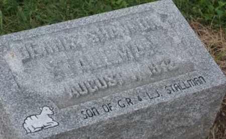 STALLMAN, DENNIS SHANNON - Holmes County, Ohio   DENNIS SHANNON STALLMAN - Ohio Gravestone Photos