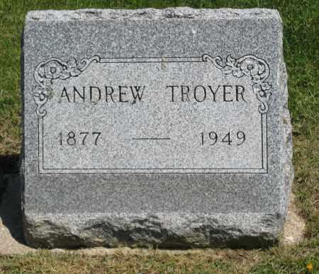 TROYER, ANDREW - Holmes County, Ohio | ANDREW TROYER - Ohio Gravestone Photos