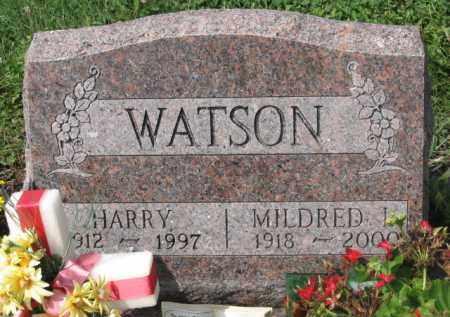 WATSON, HARRY - Holmes County, Ohio | HARRY WATSON - Ohio Gravestone Photos