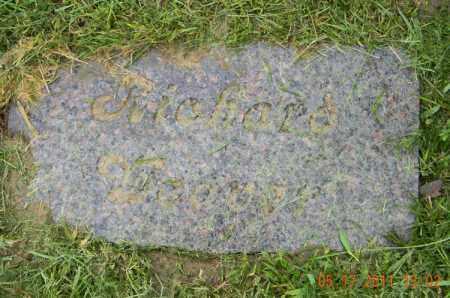 WEAVER, RICHARD - Holmes County, Ohio | RICHARD WEAVER - Ohio Gravestone Photos