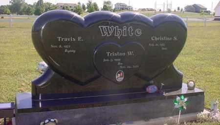 WHITE, TRAVIS - Holmes County, Ohio | TRAVIS WHITE - Ohio Gravestone Photos