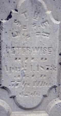 WISE, ESTHER - Holmes County, Ohio | ESTHER WISE - Ohio Gravestone Photos