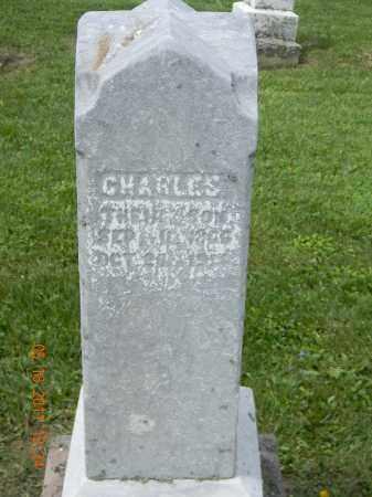 ZEHNDER, CHARLES - Holmes County, Ohio | CHARLES ZEHNDER - Ohio Gravestone Photos
